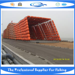 Square Fish Cage (SDC17887) pictures & photos
