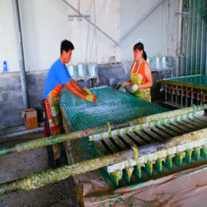 Composite Grating Pultruded Fiberglass Grating Making Machine pictures & photos
