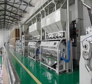 Rice Processing Machine 100tpd 150tpd 200tpd 300tpd 400tpd pictures & photos
