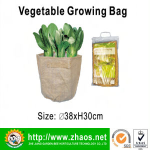 Vegetable Growing Bag pictures & photos