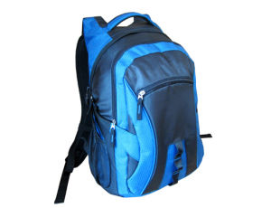 Cool Stylish Trendy Fashionable Guy Rucksack for Men (BBP10506) pictures & photos