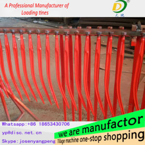 Best Selling Chisel Point/ High Quality Cranked Tine pictures & photos