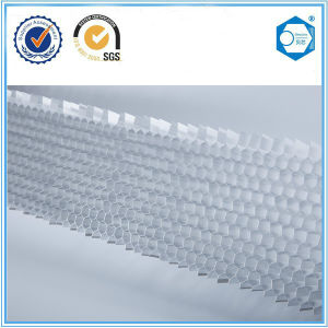 Structural Aluminium Honeycomb Core Materials pictures & photos