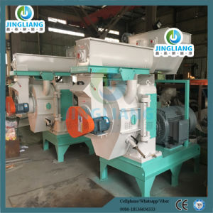 Biomass Wood/ Rice Husk/ Straw Sawdust Pelletizer pictures & photos