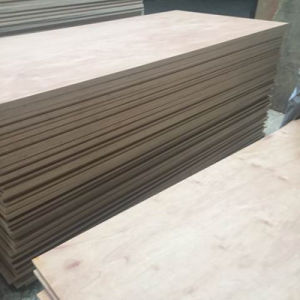 9mm Pencil Ceder Wood Plywood for South Amercia Market pictures & photos