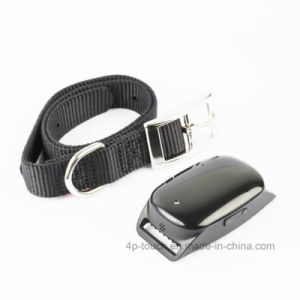 IP66 Waterproof Pet GPS Tracker with Collar (EV-200) pictures & photos