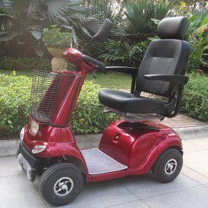 China Factory Handicapped Electric Scooter with CE (DL24500-2) pictures & photos