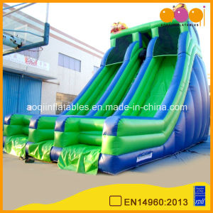 Green and Blue Inflatable High Slide with Double Lane (aq1112-2) pictures & photos