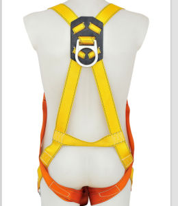 High Operation Safety Webbing Belt for Construction pictures & photos