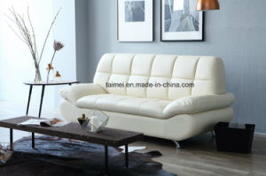 Modern Top Grain Leather Sofa (1+2+3) pictures & photos