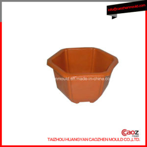 Different Kinds of Plastic Injection Flower Pot Mould pictures & photos