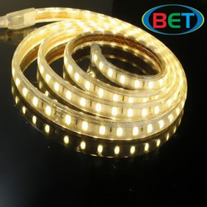 Home Dacoration LED Strip High Quality 220V Flexible pictures & photos