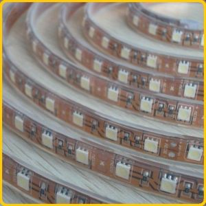 IP68 Waterproof LED Strip Lighting with Yellow Background pictures & photos