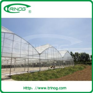 Plastic cover tropical greenhouse for sale pictures & photos