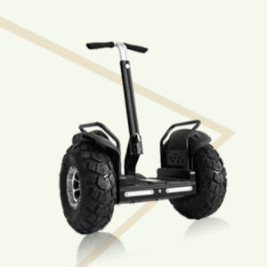 19 Inches off-Road Motorcycle/ 2 Wheels Golf Cart Balancing Motor Scooter pictures & photos