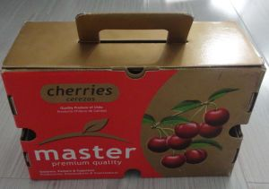 Custom Print Paper Fruit Packaging Box pictures & photos