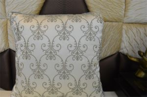 Embroidery Decorative Cushion Fashion Velvet Pillow (EDM0348) pictures & photos