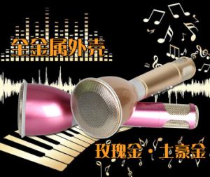 Mini Karaoke Player Microphone Bluetooth Speaker Song Recorder