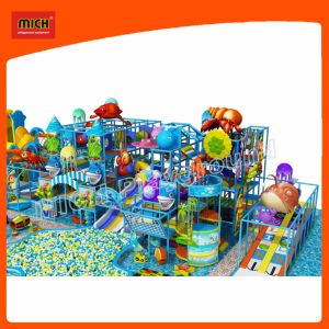 2017 Mich Indoor Playground Children Playground pictures & photos