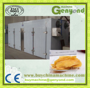 Hot Air Ficus Carica Drying Machine pictures & photos