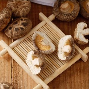 Cheap Price Smooth Mushroom pictures & photos