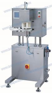 Automatic Desiccant Bottle Inserting Machine for Pharmaceutical Industry (CT-100A) pictures & photos