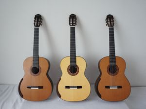 Aiersi New Arrival Concert Best Handcrafted Smallman Classical Guitar (SC201) pictures & photos