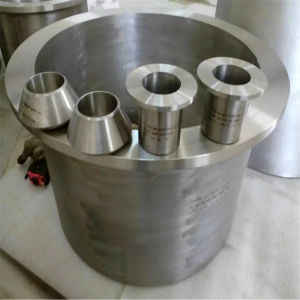 Ss 304 Steel Reducer Swage Nipple / Titanium Nipple pictures & photos