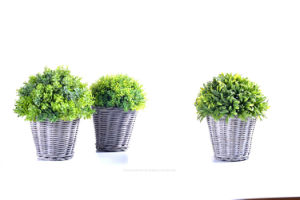 Kinds of Artificial Vivid Plants in The Rattan Basket for Outdoor /Indoor Decoration