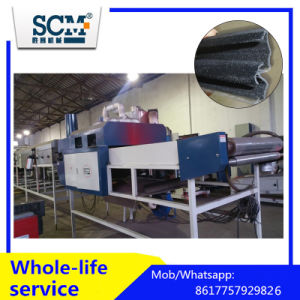 Automatic Powder Coating Machine pictures & photos