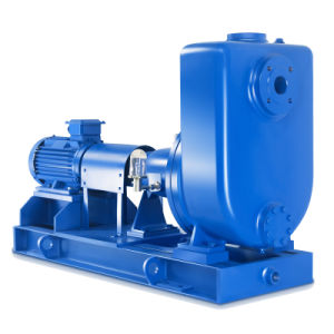 Electric Stainless Steel Horizontal Chemical Self Priming Pump pictures & photos