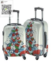 ABS /PC Printing Trolley Case pictures & photos