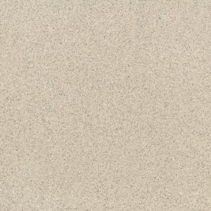 Salt and Pepper Full Body Porcelain Tiles 600*600mm pictures & photos