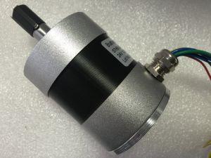IP55 12000rpm High Speed DC Brushless Spindel Motor 24V