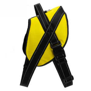 Pet Explosion-Proof Anti-Bite Polyester Harness pictures & photos