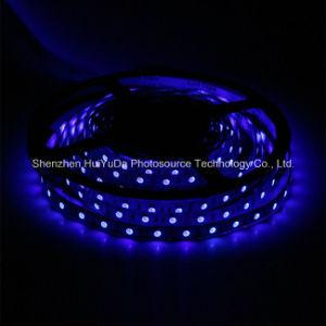 Blue Color IP20 SMD5050 Chip 60LEDs 14.4W DC24V LED Strip pictures & photos