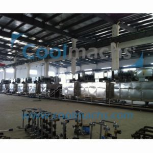 Continuous Vegetable and Fruit Hot Air Drying Machine/Automatic Dryer pictures & photos