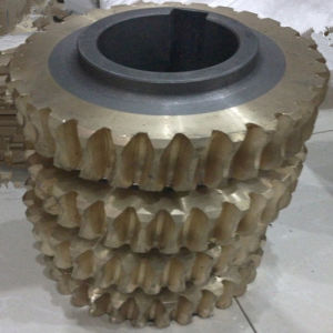 Copper Worm Gear for Reducer
