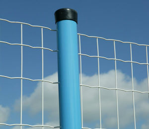 PVC Coated Wire Mesh Eurofence pictures & photos