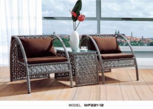 Durable Outdoor Garden Wicker Furniture (WF221-12)