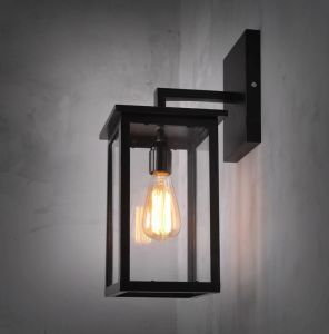 Metal Glass Wall Lamp (WHW-917) pictures & photos