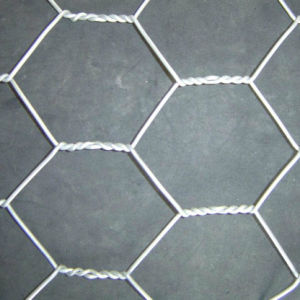 Manufacturer of Hexagonal Wire Mesh for America, Italy, South America pictures & photos