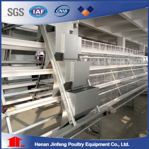 Egg Laying Chicken Cage for Nigeria Poultry Farm pictures & photos