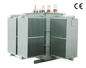 Voltage Regulator Magnetic Transformer (TSH-250/0.5) pictures & photos