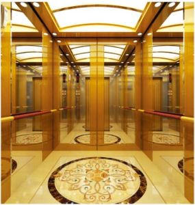 German Professional Passenger Elevator (RLS-223) pictures & photos