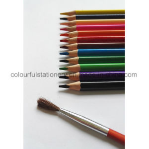 Water Color Pencil pictures & photos
