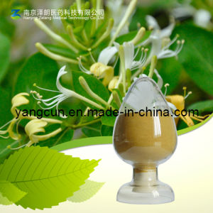 Natural Chlorogenic Acid 98% with Kosher Certificate (CAS: 327-97-9) pictures & photos