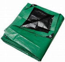 Plastic Tarp Protecton Sheet Shetter pictures & photos