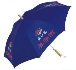 22 Inch Promotional Umbrella (BR-ST-30) pictures & photos