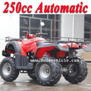 New 250cc Bode Automatic Sports ATV Can for Farm ATV Use (MC-356) pictures & photos